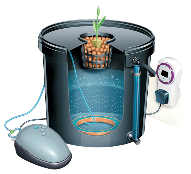 DWC(Deep Water Culture) Systems