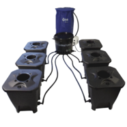 IWS DWC 6-Pot Bubbler System