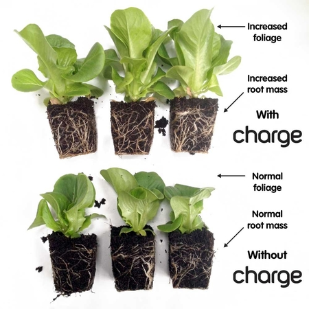 ECOTHRIVE Charge - Soil Conditioner