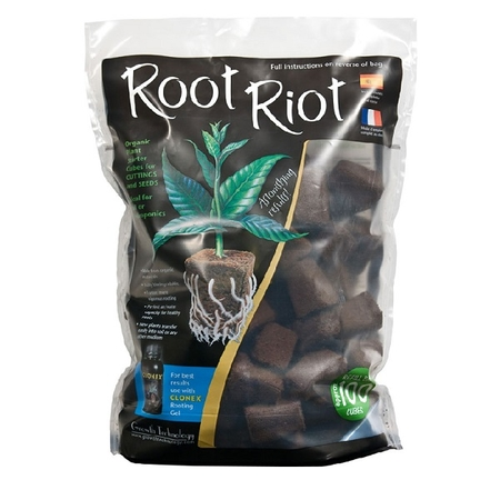 Root Riot 100st