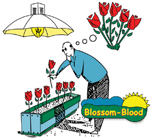 Blossom Blood 20g